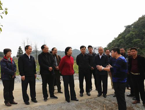陈际瓦到隆林大庆村考察新农村示范点建设。