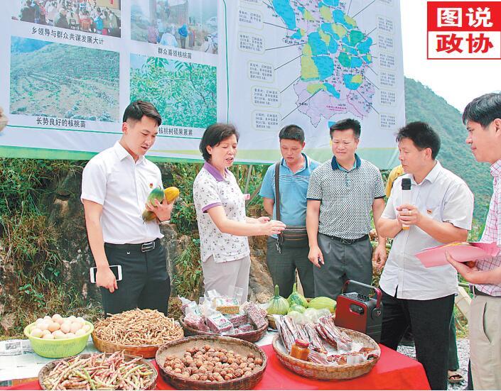 田林县政协组织界别委员和技术人员开展专题调研