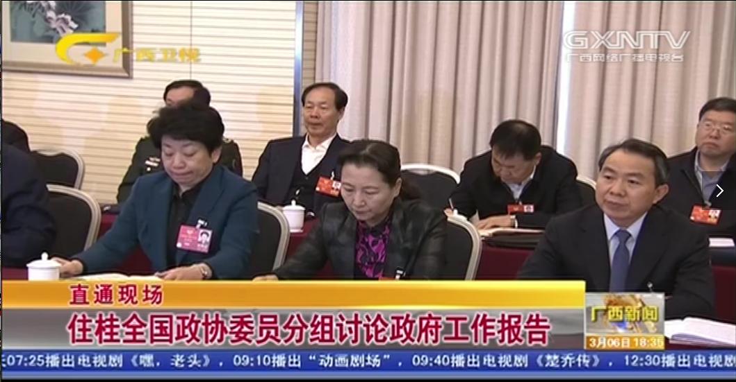 【直通现场】住桂全国政协委员分组讨论政府工作报告